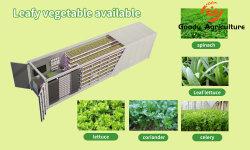 معدات الزراعة الزهرة الخضار مزرعة عمودية الحاويات المخصصة