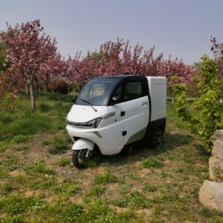 Koffiewagen Mobiel van Electric Insulated Fast Food Carrier Electric Auto te koop