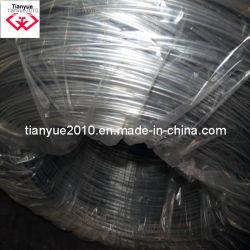 سلك حديد منخفض الكربون مزود بسلك معدني يتم تغليله عن التشغيل/بالكهرباء و لمدة أفضل سعر لجهة تصنيع النسيج الشبكي الصينية (TYH-027)