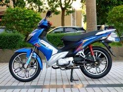 Cub-Motorrad TM110-2s