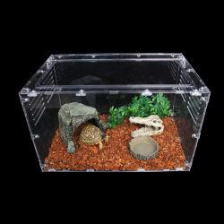Cas d'affichage de la fabrication de reptile Acrylique Acrylique personnalisée Reptile Cas d'affichage