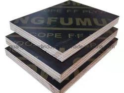 الخشب الرقائقي التجاري، وقوالب البناء، وفوردفات البناء، والخشب الرقائقي البحري، وJgf0001
