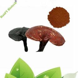 Le champignon Reishi brillant pur Ganoderma Spore en poudre