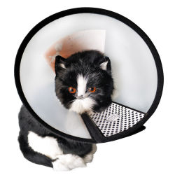 猫の子犬のプラスチックエリザベス保護カラー反かみ傷のための調節可能な回復ペット円錐形Eカラーは傷の治療の安全実用的な首カバーEsg12543を舐める