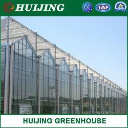 Handelsc$multi-überspannung Garten-Glasgewächshaus/Gemüse