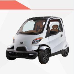 最も新しい最高の品質EEC Lzdの電気自動車