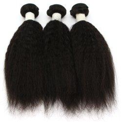 Estensione naturale di vendita calda dei capelli umani di colore di Yaki (diritto crespo)