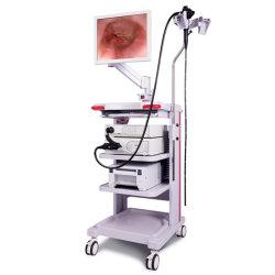 Óptica médica Ent carro móvil rígido sistema endoscopio flexible, la cirugía endoscópica de Video Juego completo con la cámara