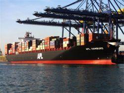 Fiable El Transporte Marítimo y Aéreo Envío desde Guangzhou a la Argentina