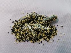 鉄のBisglycinateによって支えられるリリース餌はOEMサービスを要約する