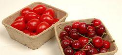 食用ホオズキApple/パルプのフルーツの皿のためのKedingの新鮮な果物のバスケット