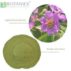 Heißer Verkaufs-neue Produkte Banaba Blatt-Auszug für Gewicht-Verlust