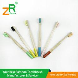Toothbrush di bambù naturale con la pittura di colore & il caso di corsa