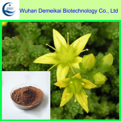 Horny Goat Weed Extract/Epimedium la médecine traditionnelle chinoise pour la tonification Yang
