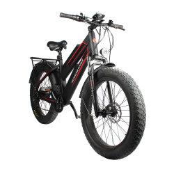 새로운 디자인 48V 750W는 전기 자전거 지방질 리튬 건전지 이중으로 한다