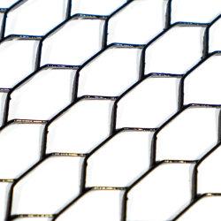 中国ダイヤモンド / 六角形粉体塗装亜鉛めっき拡張金属
