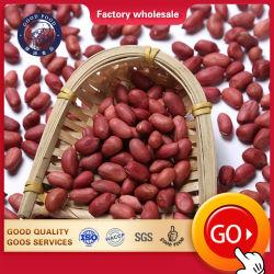 衛生販売のための乾燥されたカーネルピーナツピーナッツの未加工か新しく赤い皮Arachid