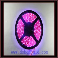 LED 스트립 조명(5050 5m 핑크)