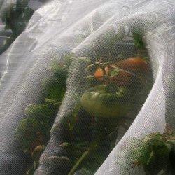 Rete della prova dell'insetto della serra della pianta di agricoltura dell'HDPE anti con UV (AIN1-1)
