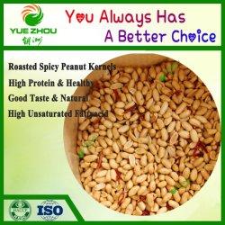 L'approvisionnement de qualité supérieure avec des prix bon marché d'arachides grillées