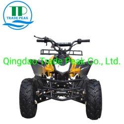 4 Nut ATV van de Vierling 125cc van de slag het Mini voor Jonge geitjes