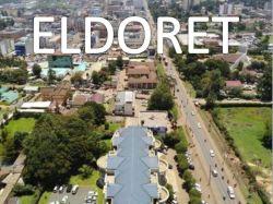 De verschepende Dienst van Qingdao aan Eldoret door Overzeese Te verschepen