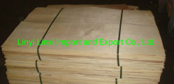 1270 x 840X0,6 mm Ppopulier Core/fineer voor Plywood-Meubilair