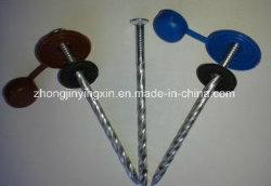 Parafuso de Coberturas de cabeça redonda as unhas com arruela de EPDM e tampas de plástico