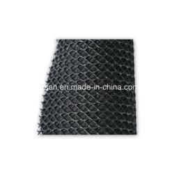 Geonet composto de HDPE de alta qualidade para drenagem