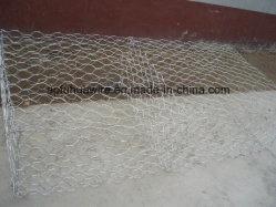 Reti per gabbia per pietre /scatola Gabion (fabbrica)