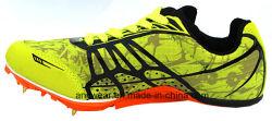 Le calzature atletiche della pista mettono in mostra i pattini del punto corrente per gli uomini e le donne (395)