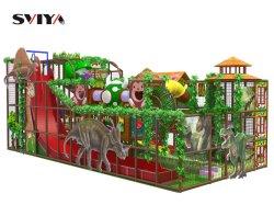子供の催し物の屋内装置は演劇の中心の屋外の屋内運動場を驚かせる