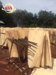La ciencia y tecnología de chapa de madera contrachapada de telas para contenedor suelo con 0.8/1.2/1.6mm de grosor
