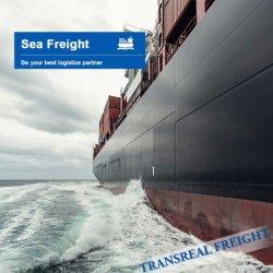 Berufsseelogistik-Fracht-Verschiffen-Service von China nach Kanada
