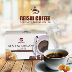 OEM Reishi Mushroom Black Instant Coffee 2 in 1 Lingzhi Caffè