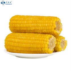 Congelado IQF en la mazorca de maíz dulce