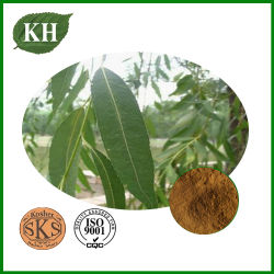 Weiße Weide-Barke-Auszug Salicin 15% ~98%