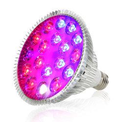 Source de lumière LED lampe de type d'élément et feux d'Ampoule de LED