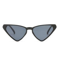 Verkaufs-wohles Dreieck-kundenspezifische Form-Sonnenbrillen