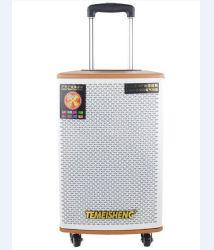 Temeisheng Leistungs-gute Qualitätsbeweglicher aktiver Stadiums-Stereolautsprecher