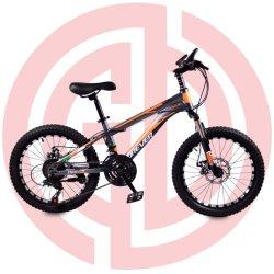 아이들 자전거를 위한 아이 자전거 자전거 20명 인치 아이들 자전거