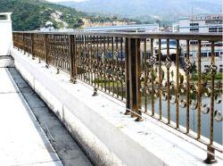 Acero galvanizado ornamentales/aluminio vallado de seguridad por el puente/River