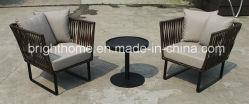 Ocio/sofá mimbre Muebles de Exterior/PE Rattan silla de jardín de tejido (BP-260)