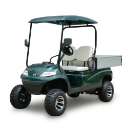 Neues 2-Seater Battery Golf Vehicle (Lt-A627. H8G)