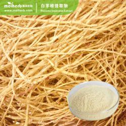 precio de fábrica Rhizoma Mayorista de hierbas medicinales Extracto Imperatae