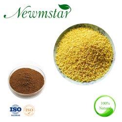 100 % Millet Seed Extract avec échantillon gratuit 10 : 1