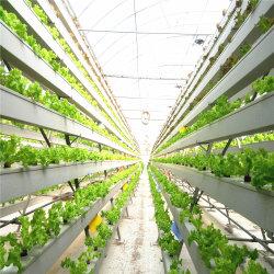 Технологического низкая стоимость сельскохозяйственного стекла Hydropoinics теплицы строительные материалы
