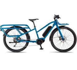 Factory 700c 36V 250W bici elettrica 700c Trekking e Bike Offerta consegna Dalla Polonia per l'Europa