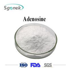 Reines natürliches Adenosin-Puder-Aminosäure-Adenosin-Preis-Rohstoff-Adenosin CAS-58-61-7
