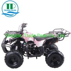 Un mini quadrato 125cc ATV dei 4 colpi